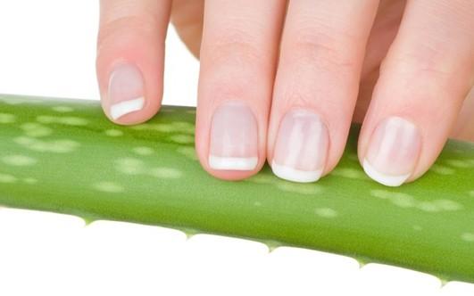 Лечение грибка кожи на ногах отзывы