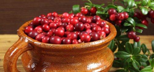 Народные средства от цистита у женщин лучшие лечебные рецепты
