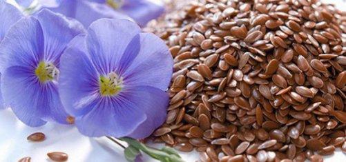 Как принимать семя льна для похудения отзывы похудевших